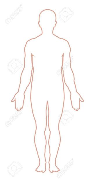 Male Body Outline Vector Illustration Stock Vector
