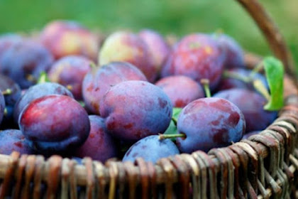 7 Content of Plums are Rich in Benefits