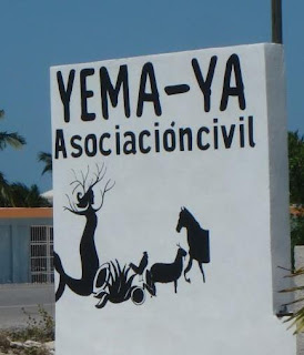 Yema-Ya organic farm run by local women in Chelem Puerto, Yucatan