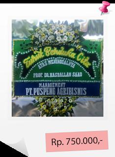 www.cassiopeiaflorist.com
