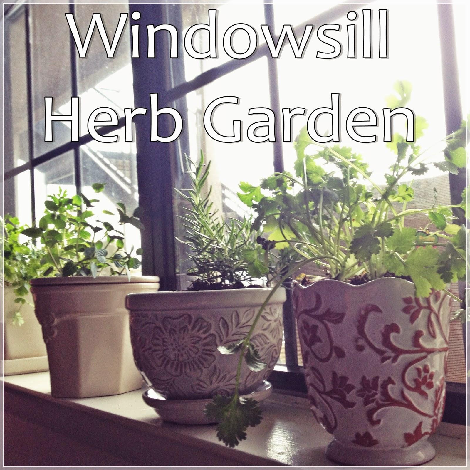 Let's Drink Coffee, Darling: Windowsill Herb Garden