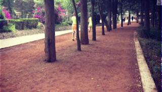 Los 5 mejores lugares para correr en la Ciudad de México