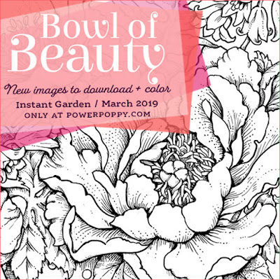 Power Poppy, Marcella Hawley, Bowl of Beauty, Digital Image, March 2019