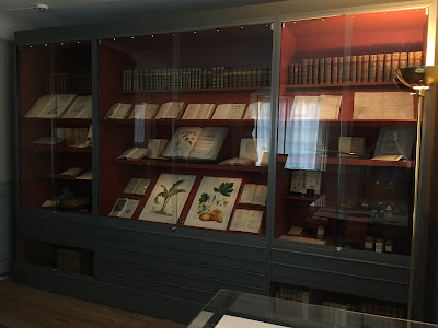 The Linnaeus Museum - bedroom and manuscripts in showcase.