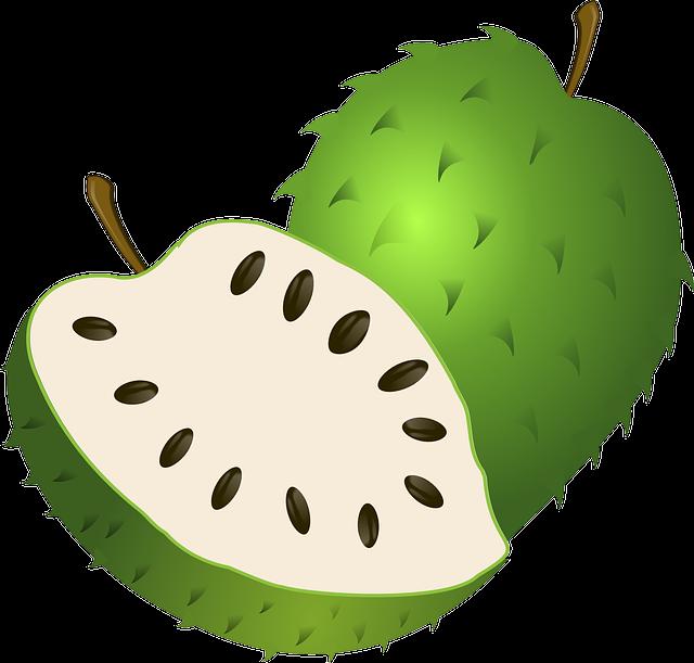 sangat populer di masyarakat kita sebab buah ini mempunyai banyak kandungan senyawa yang Kandungan Gizi Buah Dan Daun Sirsak