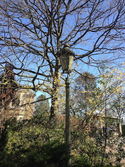 Old street lamp, somewhere between East Grafton and Wilton