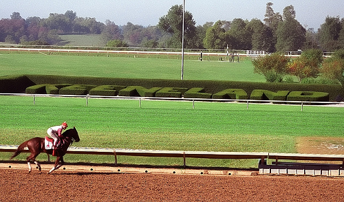 Keeneland Racecourse horse training in Lexington, Kentucky