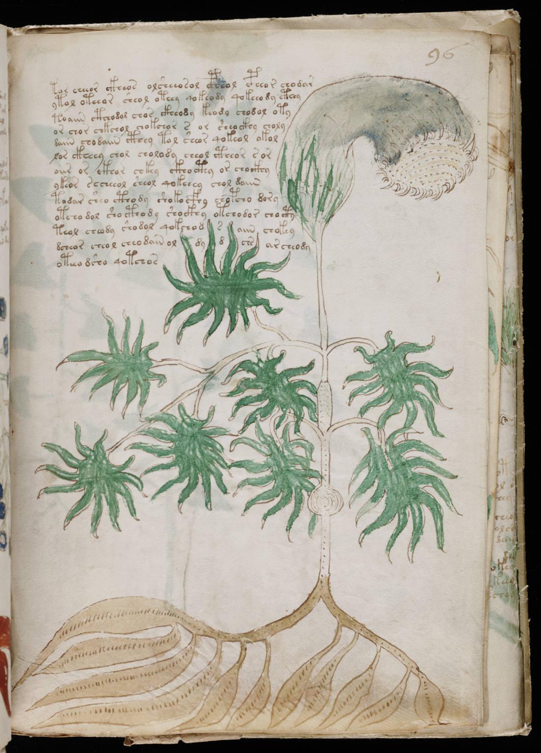 manuscrito171