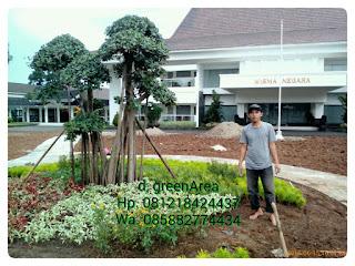 kami adalah tukang taman yang bekerja sebagai ahli landscape, jasa pembuatan taman paling murah jabodetabek