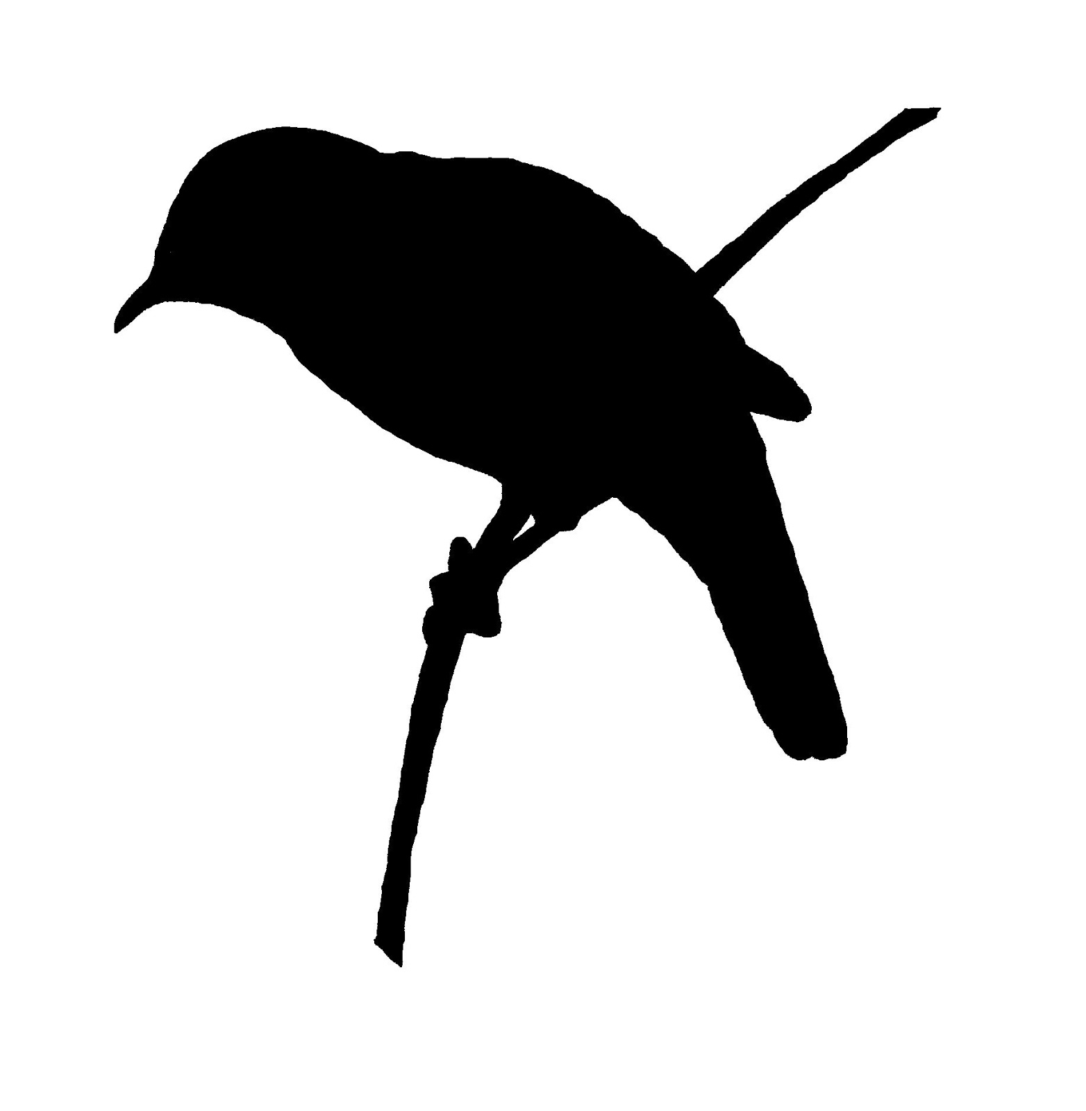 graphic regarding Bird Silhouette Printable named Electronic Stamp Structure: No cost Chicken Picture Move Silhouette
