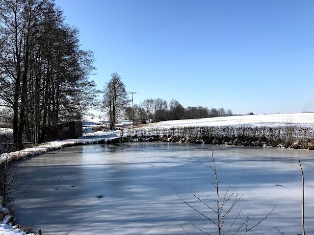 Karpfenweiher im Winter