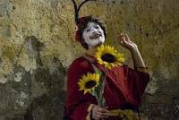 Risultati immagini per teatro paolo d'arpini