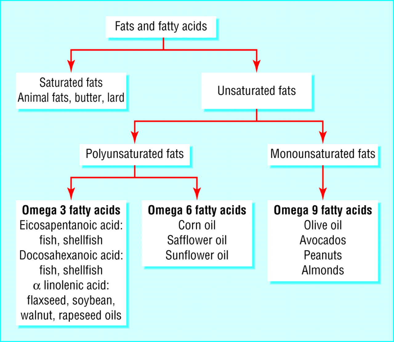 Fatty acids diagram