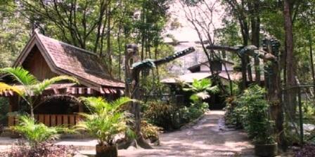 Wisata Alam di Palangkaraya tempat wisata alam di palangkaraya objek wisata alam di palangkaraya