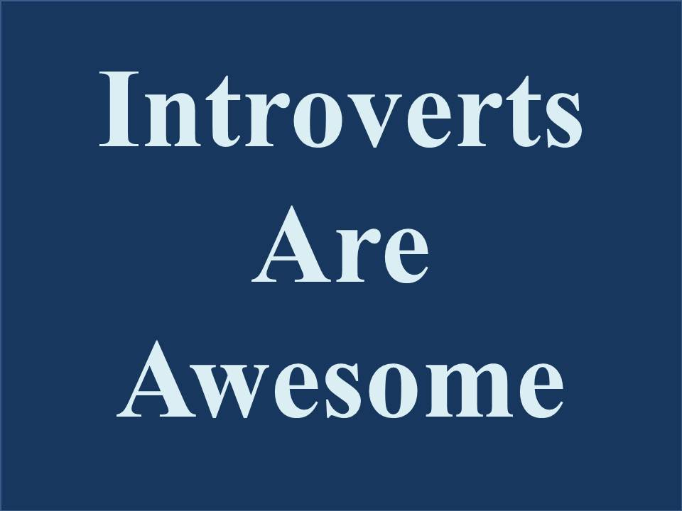 SOME ASSEMBLY REQUIRED: Introverts Are Awesome
