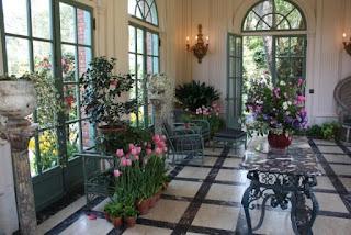 room of houseplants.jpeg