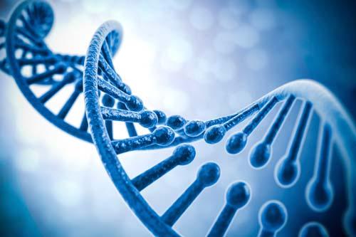 18 Contoh Manfaat dan Bahaya Biologi Bagi Kehidupan Manusia dan Lingkungan