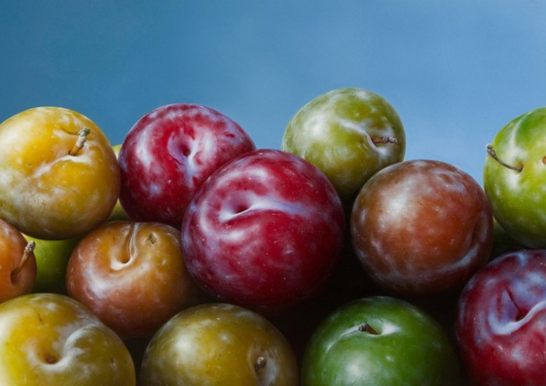 14-Plums-Antonio-Castelló-Avilleira-Visual-Art-with-Hyper-Realistic-Paintings-www-designstack-co