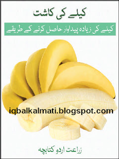 Banana Cultivationin Pakistan Urdu Book