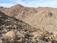View northwest toward Boy Scout Trail from near the west flank of Mount Mel, Joshua Tree National Park