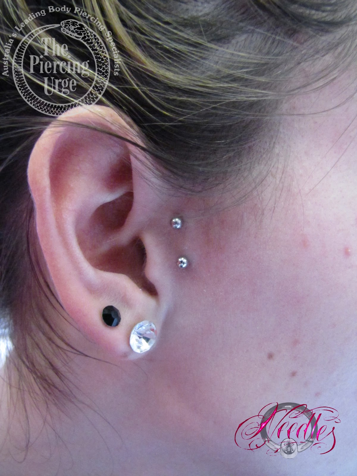 NINE BODY PIERCING BLOG: Over 3 Months Old Surface ...