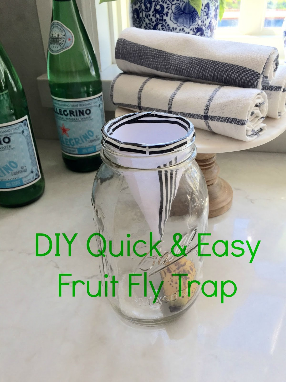 Eleven Gables: DIY Quick and Easy Fruit Fly Gnat Trap