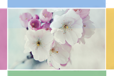 hover effect, mouseover, blogger hover effects