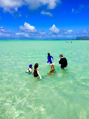 Kane'ohe Bay Sandbar: grateful to visit with family in Hawaii recently