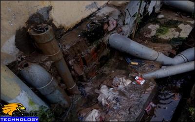 Nâng cấp đạt tiêu chuẩn công trình xử lý nước thải - Phải xử lý nước thải chăn nuôi heo (lợn)