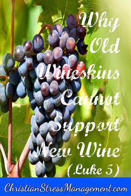 Why old wineskins cannot support new wine