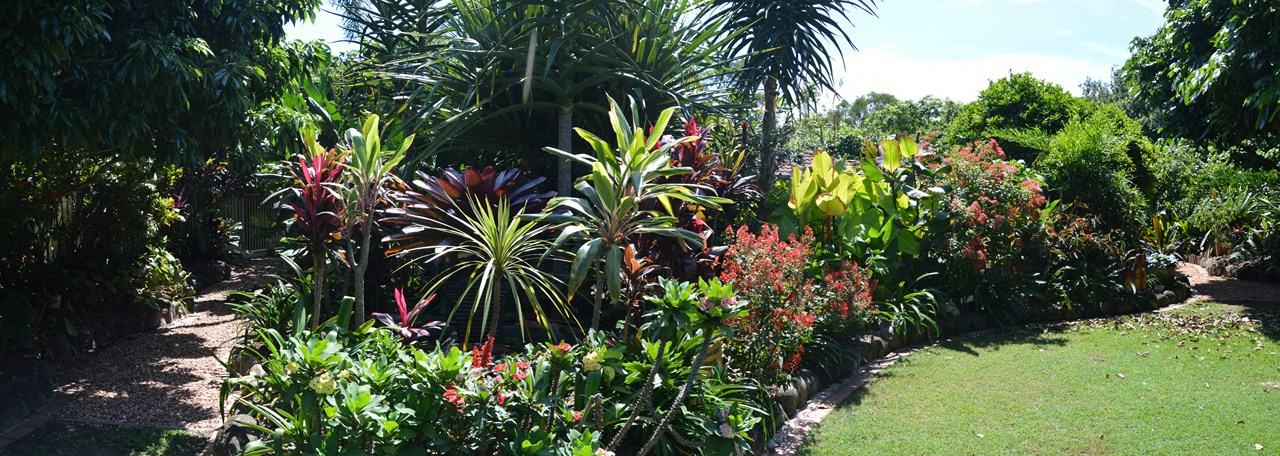 SubTropical Queensland Open Garden: March 2013