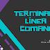 La terminal y líneas de comando