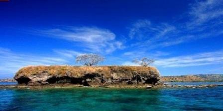 pulau ular di buton pulau ular wera pulau ular cilegon pulau ular unik dan menarik pulau ular baubau pulau ular wera bima pulau ular