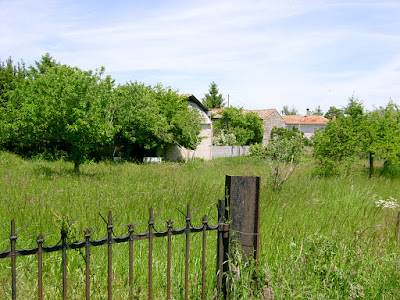 French Village Diaries new life in France orchard grow your own