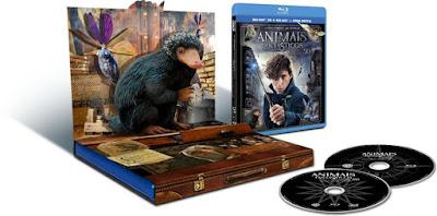 Conheça as edições em DVD e Blu-ray de 'Animais Fantásticos e Onde Habitam'! | Ordem da Fênix Brasileira