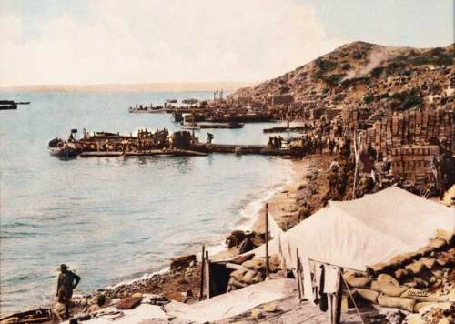 Anzac Cove Wallpapers Anzac Day Rising Sun Badge Logo Fern Tattoo Pictures