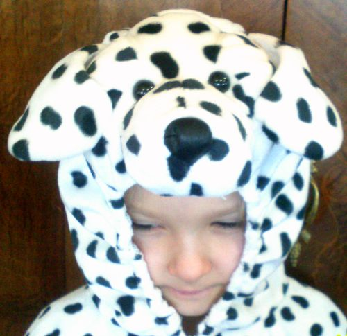 Dalmation Puppy Costume -- Kids Size 2T - 4T & Treasure Box . . . . . 881-6463: Dalmation Puppy Costume -- Kids ...