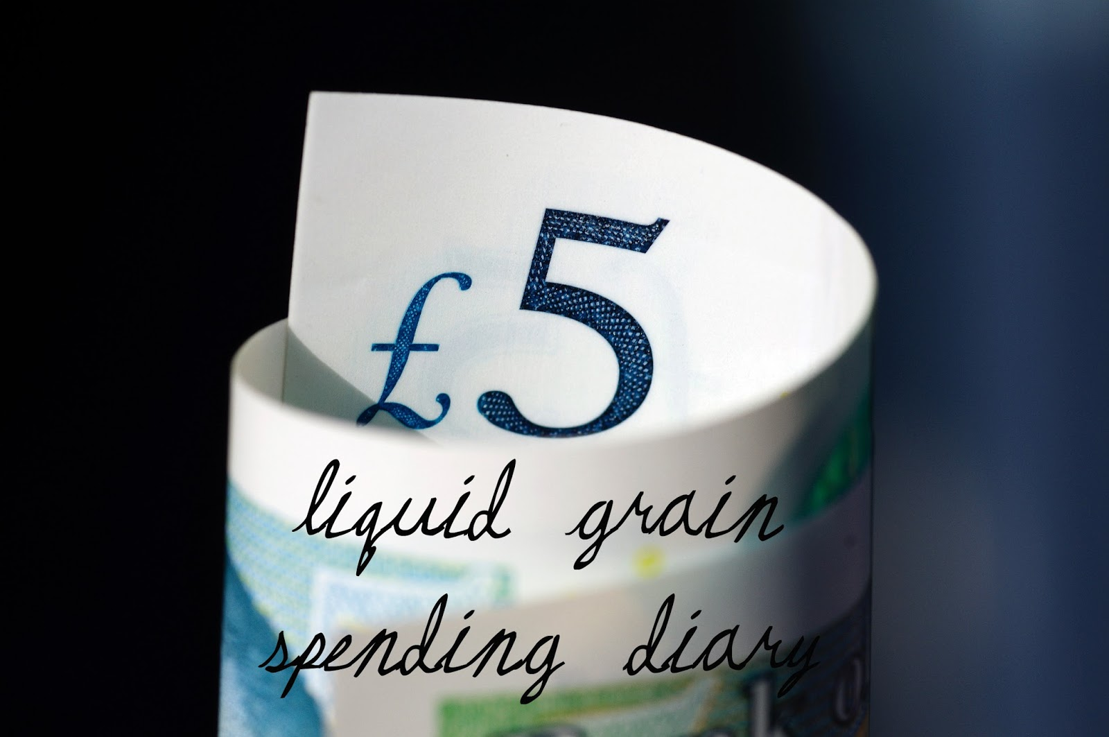 liquidgrain liquid grain money spending diary budget blog blogger