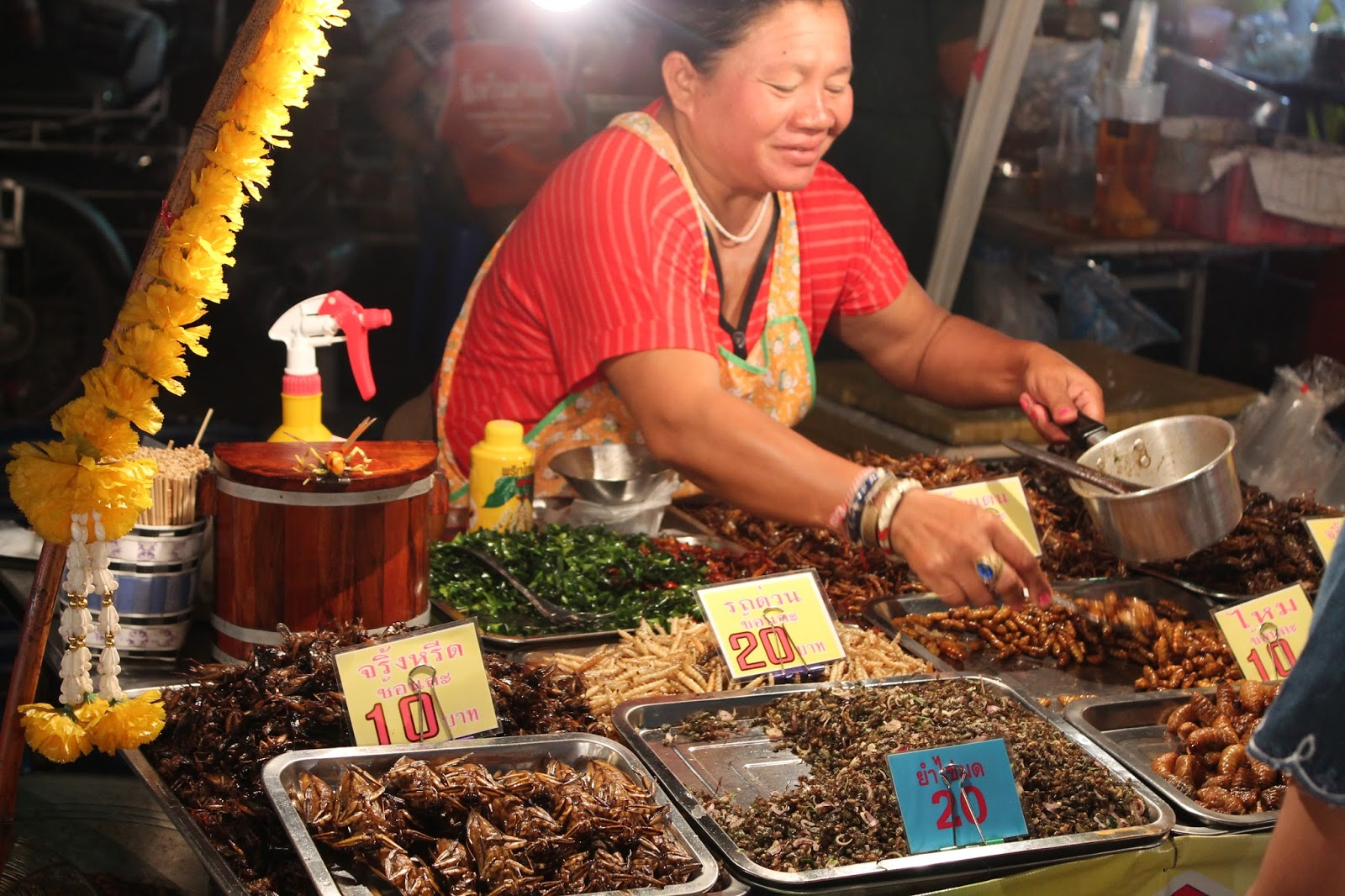 Insect Street Food Phuket