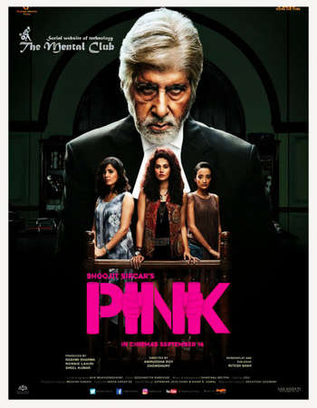 Poster Of Pink 2016 Hindi 550MB DVDRip 720p ESubs HEVC Watch Online Free Download downloadhub.in