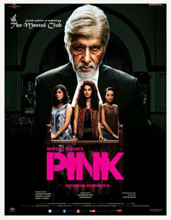 Poster Of Pink 2016 Hindi 400MB DVDRip 480p ESubs Watch Online Free Download