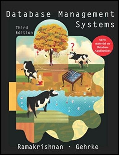Database Management Systems 3rd Edition By S Ramakrishnan