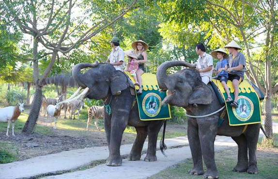 Harga Ticket Masuk Masuk Bali Safari Serta Marine Park