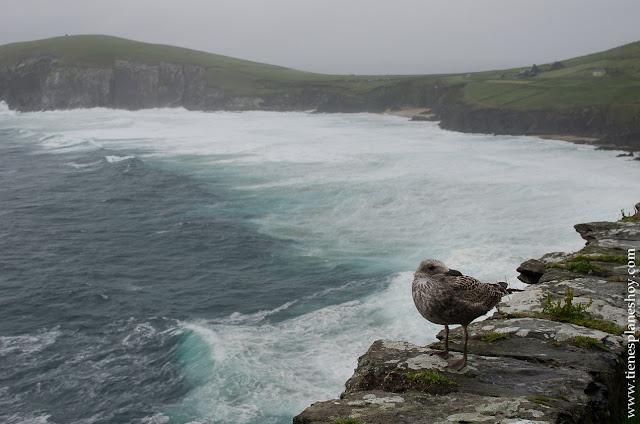 Peninsula de Dingle Condado de Kerry Irlanda