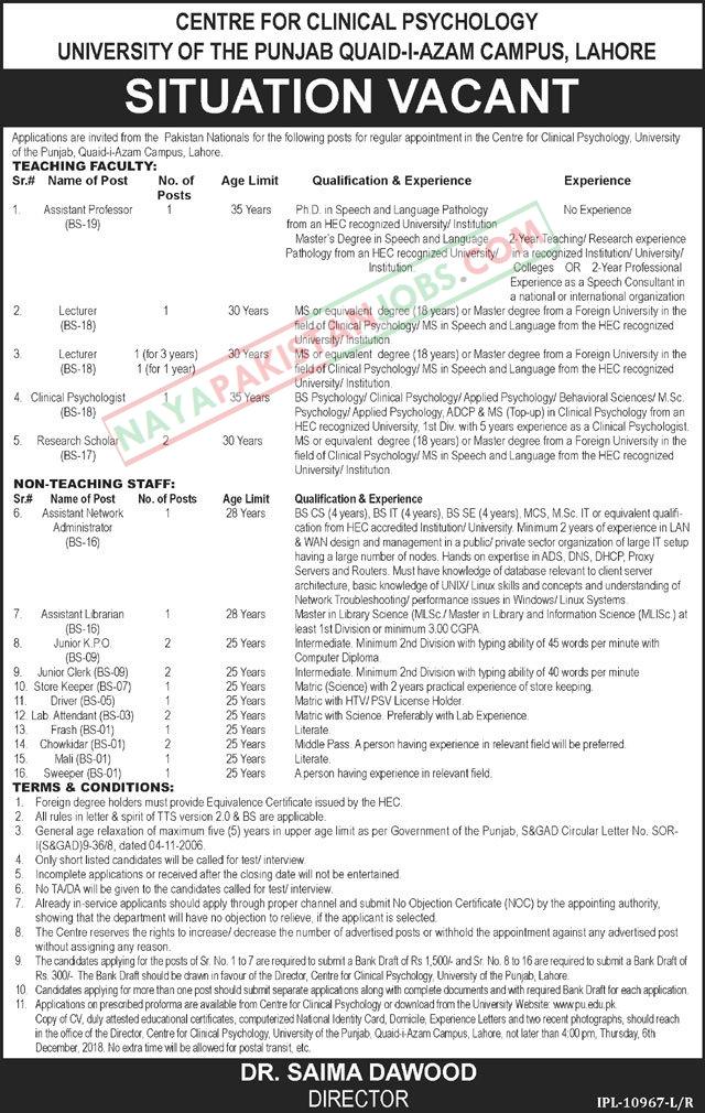 Latest Vacancies Announced in University Of The Punjab Pu Quaid I Azam Campus Lahore 18 November 2018 - Naya Pakistan