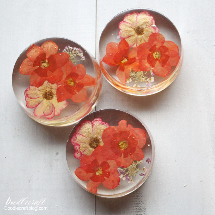 tutorial directions on how to make pressed flower paperweights with resin
