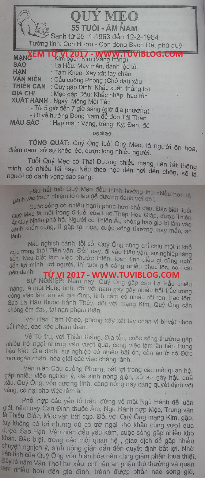 Tu vi 2017 Quy Mao 1963 nam mang