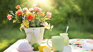 afternoon tea, garden, tea cup
