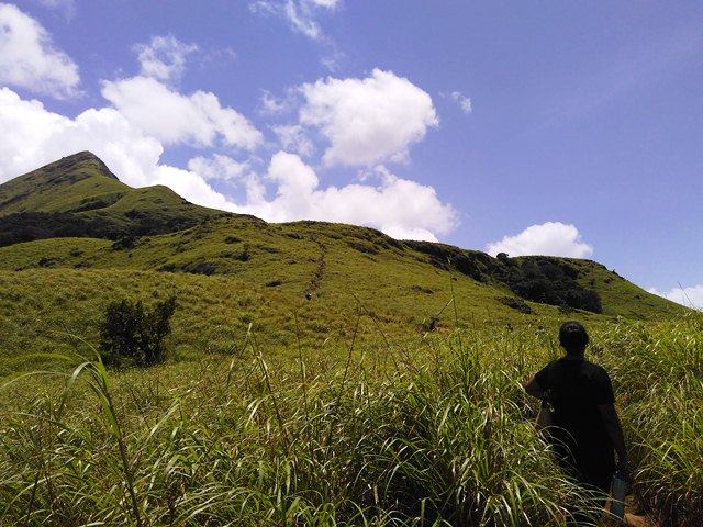 Chembra Peak Trekking - The tough trek