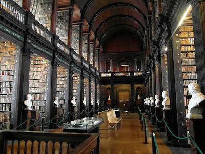 biblioteca bustos